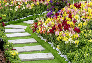 Landscaping Tips for New Homeowners